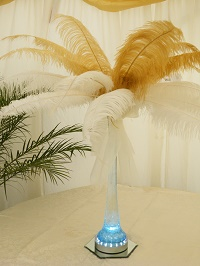 ostrich feather display (rental only)