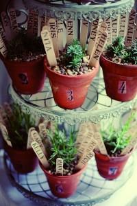 succulent table plan